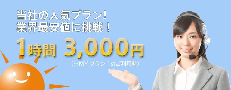 当社の人気プラン1時間3,000円